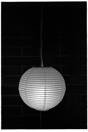 China Ball, Hexar RF, ZM Biogon 35, Delta 400