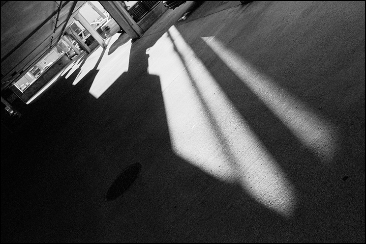 Shadows, Hexar RF, ZM Biogon 35, Efke 400, Tmax Dev