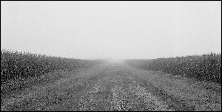 Country Road, Hexar RF, 50 Hex, Delta 100 @ 50, Diafine