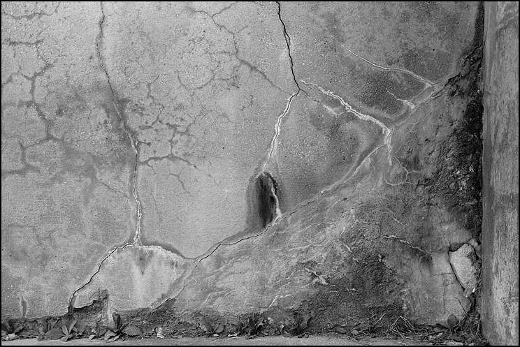 Cracks, Hexar RF, ZM Biogon 35, HP5, Tmax Dev