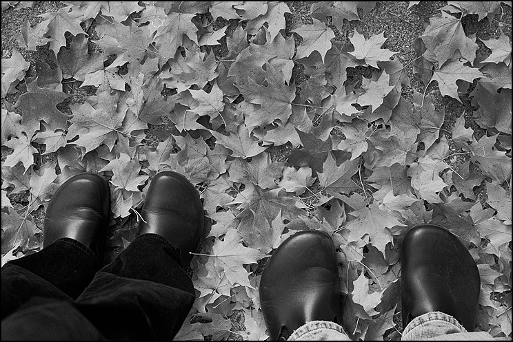 Shoes, Hexar RF, 50 Hex, HP5@200, Tmax Dev